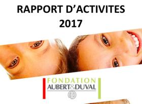 Fichier Rapport d'activité 2017